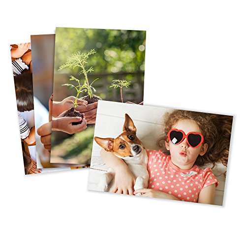 Photo Prints  Matte  Standard Size (5x7)