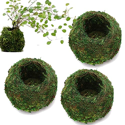 3Pack Natural Planter Weave Moss Ball Kokedama Planter Bonsai Plant...