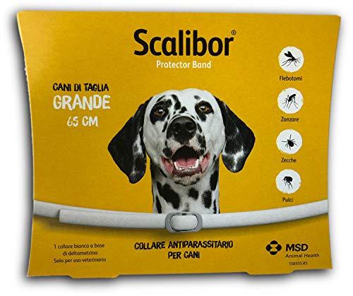 Scalibor Collare, 65 cm - MSD Animal Health