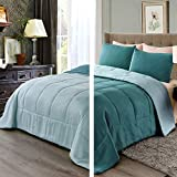 Exclusivo Mezcla Lightweight Reversible 3-Piece Comforter Set for All Seasons, Down Alternative Comforter with 2 Pillow Shams, Queen Size, Turquoise/Aqua