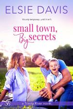 Small Town, Big Secrets by Elsie Davis