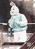 2016 Topps WWE Wrestling Bronze #11 The Bunny