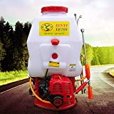 Agricultural Gas Powered Backpack Mist Duster Sprayer Gasoline Powered Knapsack Lawn Garden Tool US Stock