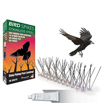 ASPECTEK Répulsif Pigeon Kit Pics pour Oiseaux en Acier Inoxydable, 10 Pieds (3 m)