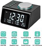 Alarm Clock Radio with FM Radio, Dual Alarms Clock, 3.2' LED Display with Dimmer, Snooze, Sleep Timer, Temperature Display, 12/24 Hours, Adjustable Alarm Volume, Headphone Jack, Dual USB Charging Port