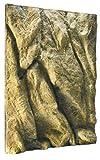Exoterra Fond de Décoration en Relief pour Terrarium 45x60 cm...