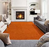 Ottomanson Soft Cozy Color Solid Shag Area Rug Contemporary Living and Bedroom Soft Shag Area Rug, Orange, 5'3' L x 7'0' W