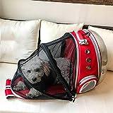 ZBHGF Ampliable Portador del Gato Mochila, Cápsula Espacial Burbuja Portador del Gato para El Pequeño Perro, Mascotas Yendo De Excursión el Morral Que Acampa,Rojo
