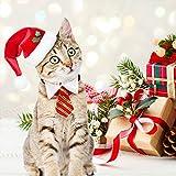 Dog Santa Hat Cat Xmas Hat, Cat Christmas Outfits