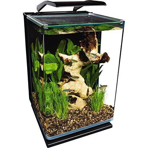 Marineland Portrait Glass LED aquarium Kit, 5 Gallons, Hidden...