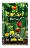 Substrato idóneo para cactus, plantas crasas y suculentas Contiene Agrosil y arena de cuarzo que aseguran el desarrollo de las raíces y el crecimiento de la planta pH = 5,5 – 7,0 Tipo de material: Compuesto