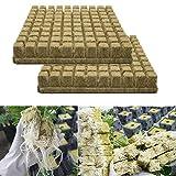 Almabner Rockwool/Stonewool Cubes Starter Sheets, Hydroponic Grow Rockwool Cubes Base de cultivos sin suelo, cultivos hidropnicos