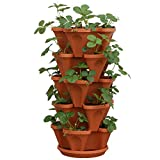 5-Tier Strawberry and Herb Garden Planter - Stackable Gardening Pots with 10 Inch Saucer (Terra-Cotta)