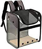 ccfgh Portable del Viaje Transpirable Mochila del Perro casero Productos del Gato de PVC Transparente Exterior Plegable portátil Bolsa de Transporte Deepblue (Color : Lightgrey)