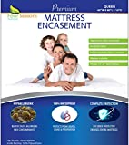 Four Seasons Essentials Queen Mattress Protector Bedbug Waterproof Zippered Cover Hypoallergenic Premium Quality Encasement Protects Against Dust Allergies