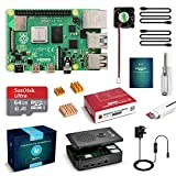 LABISTS Raspberry Pi 4 Starter Kit Pro (4G RAM)- 64GB SD Card with Raspbian Preinstalled, Cooling Fan, Micro HDMI Cable x 2, Black Case Special Designed for Pi 4B