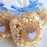 100 Popcorn Clear Party Favor Bags 4x2x8