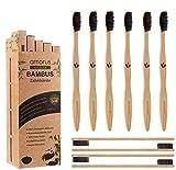 Lot de 10 Brosses à Dents en Bambou Biodégradable avec des...