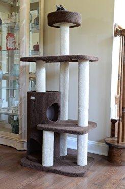 Armarkat-Premium-Cat-Tree-Model-F5602-Chocolate