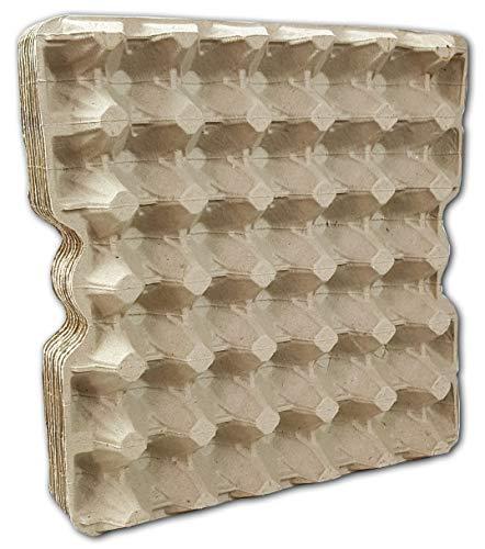 Ingbertson Cajas de huevos para huevos de gallina, sin estam