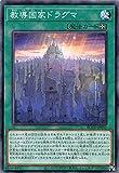 遊戯王 ROTD-JP051 教導国家ドラグマ (日本語版 ノーマル) ライズ・オブ・ザ・デュエリスト
