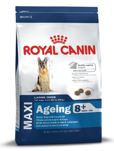 Royal Canin Size Maxi Ageing 8+, 1er Pack (1 x 15 kg)