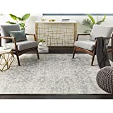 Janine Gray and Beige Updated Traditional Area Rug 5'3' x 7'3