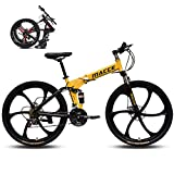 WXHHH Foldable Mountain Bike, 24-Inch Folding Speed Bicycle 21 Speed Folding Bike Shock Absorption Bicycle Bike