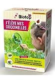 Biotop - Kit d'élevage de coccinelles Tout en 1 - avec Envoi simultané des...