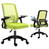 Ergonomic Office Chair, mesh Computer Desk Chair with Wheels Kids Rolling Chair for Home Office Modern Comfy Office Chairs with arms Height Adjustable Back Lumbar Support Green Task Chair (Green)