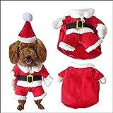 Rokoo Disfraz de Mascota de Navidad Traje de Perro con Gorro de Santa Claus Escudo de Capucha para Perros pequeños Gatos Divertido Perrito de Fiesta de Navidad Ropa