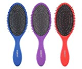 Conair Detangling Cushion Brush Set, 3pc (Colors May Vary)