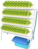 Kit de cultivo hidropnico, sistema de plantacin hidropnica de Vogvigo para hortalizas 36 ubicacin 4, kit de herramientas de plantacin hidropnica