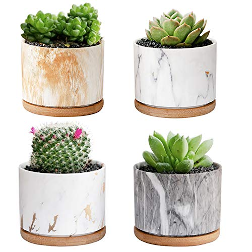 Succulent Pots with Drainage Tray, DeeCoo 3.5 Inch Succulent Planters,...