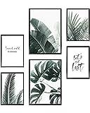 Heimlich® Tableau Décoration Murale - sans Cadres - Set de Poster Premium pour la Maison, Bureau, Salon, Chambre, Cuisine - 2 x (30x42cm) et 4 x (21x30cm) | »Palmiers & Monstera «