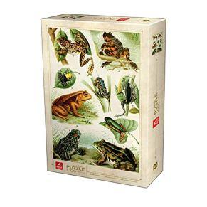 Deico Games Puzzle pcs D-Toys Encyclopedia Frogs-Puzzle (1000 Piezas), diseño de Ranas, Multicolor (5947502875703/EN 01)
