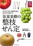 【梨の剪定方法を画像で解説】剪定技術の種類と剪定前後の写真 74