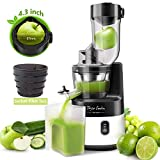 Slow Masticating Juicer Machine Extractor 55RPM for Juice and Sorbet Taylor Swoden