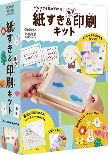 学研プラス 紙すき&寒天印刷キット Q750673