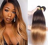 Meche Bresilienne Lot 3 Tissage Blonde Cheveux Humain Brésiliennes 100% Naturel Vierge Ombre 3 Tone Hair Couleur Noir à Brun Foncé à Blonde Court 12 14 16 pouces
