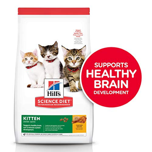 Hill's Science Diet Dry Cat Food, Kitten, Chicken Recipe, 7 lb Bag