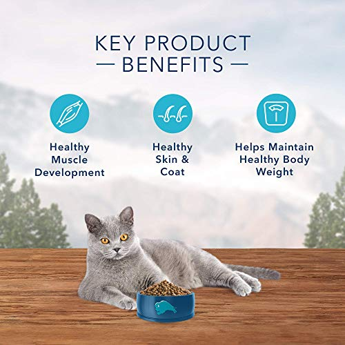 Product Image 5: Blue Buffalo Wilderness High Protein, Natural Adult Indoor Dry Cat Food, Chicken 11-Lb