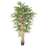 Flore Office Bambou Artificiel ECO 3 (200 cm) Haut de Gamme Fausse Plante Bambou Zen Nouveautés