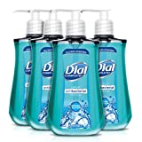 Dial Antibacterial Liquid Hand Soap, Spring Water, 9.375 Ounce (Count...