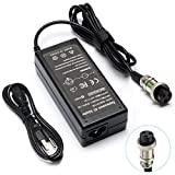 KAQIAR New 36W Electric Scooter Battery Charger for Razor E100 E200 E300 E125 E150 E500 E175 PR200, E225S E325S MX350, Pocket Mod, Sports Mod, and Dirt Quad 3-Prong Inline