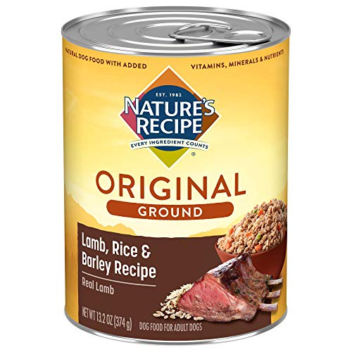 Nature's Recipe Easy to Digest Wet Dog Food, Lamb,...