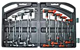 16 Piece T-Handle allen wrench set, Tamper proof star Key Set, Long arm ball End Hex Key Wrench Set, With Engineering plastic Carry Case. Ideal Tool Gift. Happy Thanksgiving Day