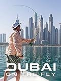 Dubai on the Fly