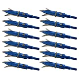 PA 12pcs Hunting Broadheads 100 Grain Archery Broadheads New Steel Broadheads 2 Blade for Compound Bow Crossbow