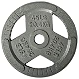 Sporzon! Cast Iron Olympic 2-Inch Grip Plate Weight Plate for Strength Training, Weightlifting and Crossfit, Single
